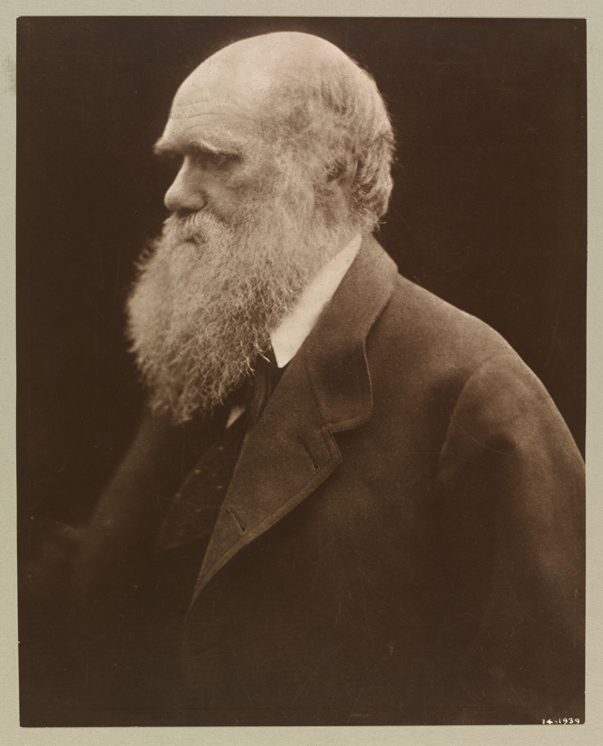 Photo of Charles Darwin by Julia Margaret Cameron