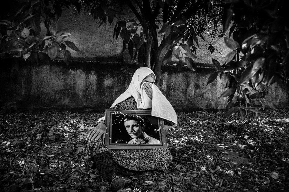 Tehran Times, Iranian Photographers