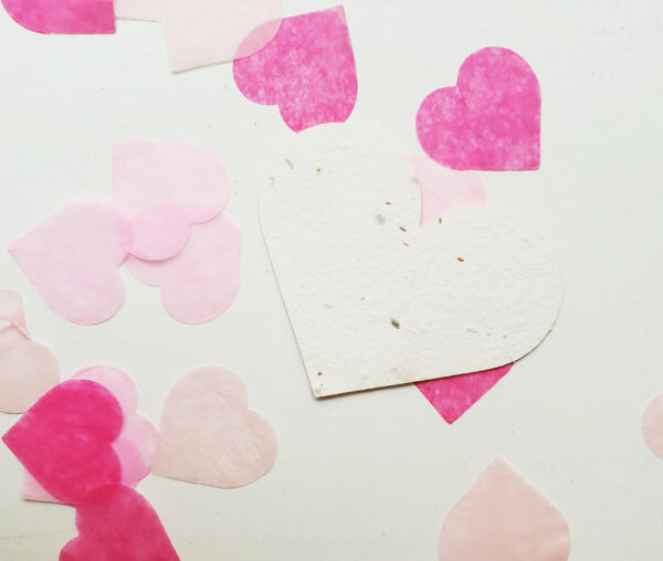 Seed Heart with heart-shaped confetti in pink and hot pink